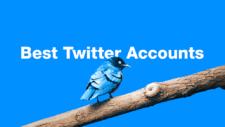 Best Twitter Accounts