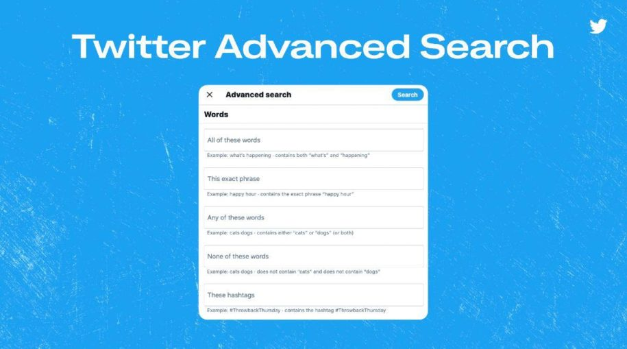 how to search someone's tweets